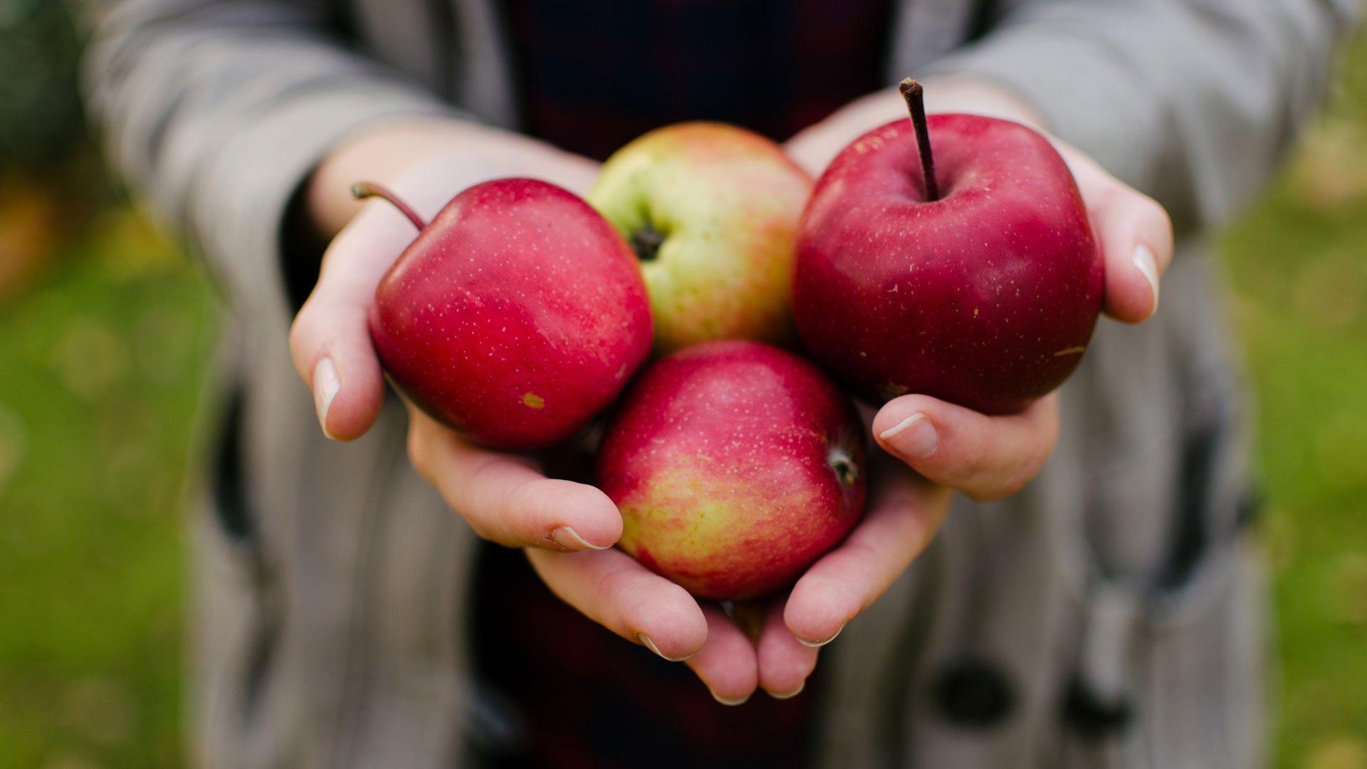 Ravintovalmentajan johdolla toteutettava ravintovalmennus tarjoaa apua terveellisen ruokavalion rakennukseen.
